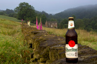 Pilsner Urquell on stone wall